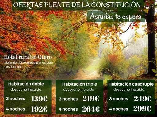 ofertas-puente-de-la-constitucion-2016-reduced